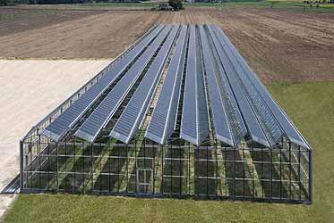 Quinto conto energia per serre pensiline tettoie - Serre per terrazzi ...